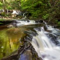 Cascading water flowing along the Falls Trail.- Ricketts Glen State Park