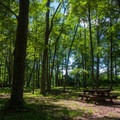 Picnic area at the edge of a field.- Hickory Run State Park