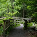 The trail to the falls is short and ADA accessible.- Moss Glen Falls