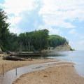 Large driftwood beneath the bluffs.- Fossil Beach