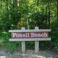 A beach sign at the trailhead.- Fossil Beach