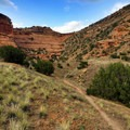Side trail leading up the cliffs from Black Rocks.- Colorado River: Ruby Horsethief Canyon