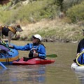 Ruby Horsethief is a dog-friendly stretch of water.- Colorado River: Ruby Horsethief Canyon