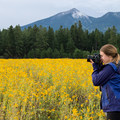This spot is amazing for photography.- Fort Valley Flower Field