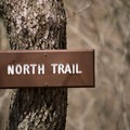 It's possible to make a loop by joining the North and South trails.- Mount Pisgah via South Trail