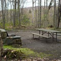A typical site.- Underhill State Park Campground