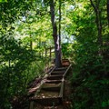Looking up the stairs going to the parking lot along Interpretive Loop.- Grand Gulf State Park