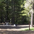 A typical campsite.- Clear Lake Campground