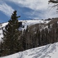 Lower Silver Fork.- Silver Fork in Big Cottonwood Canyon