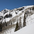 Silver Fork.- Silver Fork in Big Cottonwood Canyon
