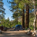 Some sites are shaded in the afternoon and near the river.- Fork Campground