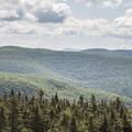The surrounding Catskill Mountains.- Balsam Lake Fire Tower