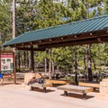 Sunset Campground has its own shuttle stop.- Sunset Campground