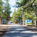 North Campground loop road.- North Campground