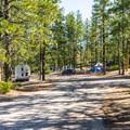 North Campground.- North Campground