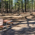 Day use picnic area in North Campground.- North Campground