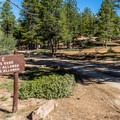 Loops C and D are for tent campers or smaller RVs.- North Campground