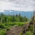 A viewpoint about 50 yards past Mount Waumbek on the Kilkenny Ridge.- Mount Starr King + Mount Waumbek
