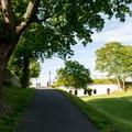 The long, shady paths at Fort Sewall.- Fort Sewall
