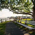 Shaded pathways abound at Fort Sewall.- Fort Sewall