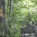 The path widens up to a dirt and rock road.- Bearpen Mountain