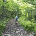 Continue to ascend at a steep grade.- Bearpen Mountain