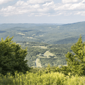 More views of the valley to the north.- Bearpen Mountain