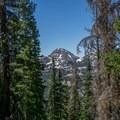 Bald Mountain poking out through the trees.- Kletting + A-1 Peak