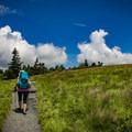 Climbing Round Bald.- Carvers Gap to Grassy Ridge Bald