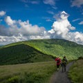 The balds of Roan is the longest stretch of balds in the Appalachian Mountains, and it offers endless views!- Carvers Gap to Grassy Ridge Bald