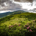 The balds of Roan are beautiful year round, but they become even more incredible in the summer months.- Carvers Gap to Grassy Ridge Bald