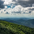 Cloudy days on Roan are the best days to explore!- Carvers Gap to Grassy Ridge Bald