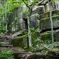 Hayworth Hollow is one of the most interesting spots of the quarry, offering a sudden drop in temperatures in the summer months, moss-covered boulders, and a cave that's closed off to the public.- Mead's Quarry at Ijams