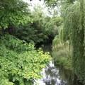 The Avon River marks the eastern border of Hagley Park.- Hagley Park + Botanic Gardens