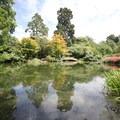 Sights of Hagley Park.- Hagley Park + Botanic Gardens