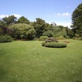 One of many lawns of Hagley Park.- Hagley Park + Botanic Gardens
