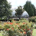 The Cunningham House provides a great backdrop to the rose garden.- Hagley Park + Botanic Gardens