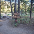 Continue on the Elden Lookout Trail at this junction.- Mount Elden Slabs
