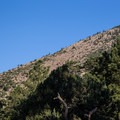 A view of the slabs from the Elden Lookout Trail.- Mount Elden Slabs