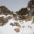 Nearing the top of Mount Olympus.- Mount Olympus Snowshoe