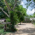Parking area at Clarissa Falls Resort in Belize. - Mopan River: Clarissa Falls