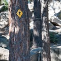 The Castle Rock Trail near Big Bear Lake, California.- Castle Rock Crag via Lower Trailhead