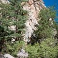 Castle Rock near Big Bear Lake, California.- Castle Rock Crag via Lower Trailhead