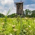 You'll find birdhouses and other bird habitats set up along the trails.- Seven Islands State Birding Park