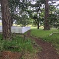The Royal Marine Cemetery is off a short spur trail.- San Juan Island: Young Hill