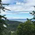 View of Haro Strait.- San Juan Island: Young Hill