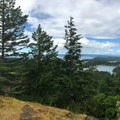 Panorama from a viewpoint at the end of a short spur trail.- San Juan Island: Young Hill