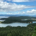View of Mitchell and Garrison Bays off a spur trail.- San Juan Island: Young Hill