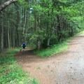 The actual trailhead is down this trail toward English Camp.- San Juan Island: Young Hill