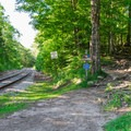 The trail heads into the woods just across the train tracks. - Arethusa Falls